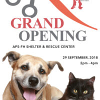New Shelter, Grand Opening