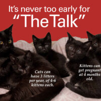 """Never Too Early for """"The Talk"""""""