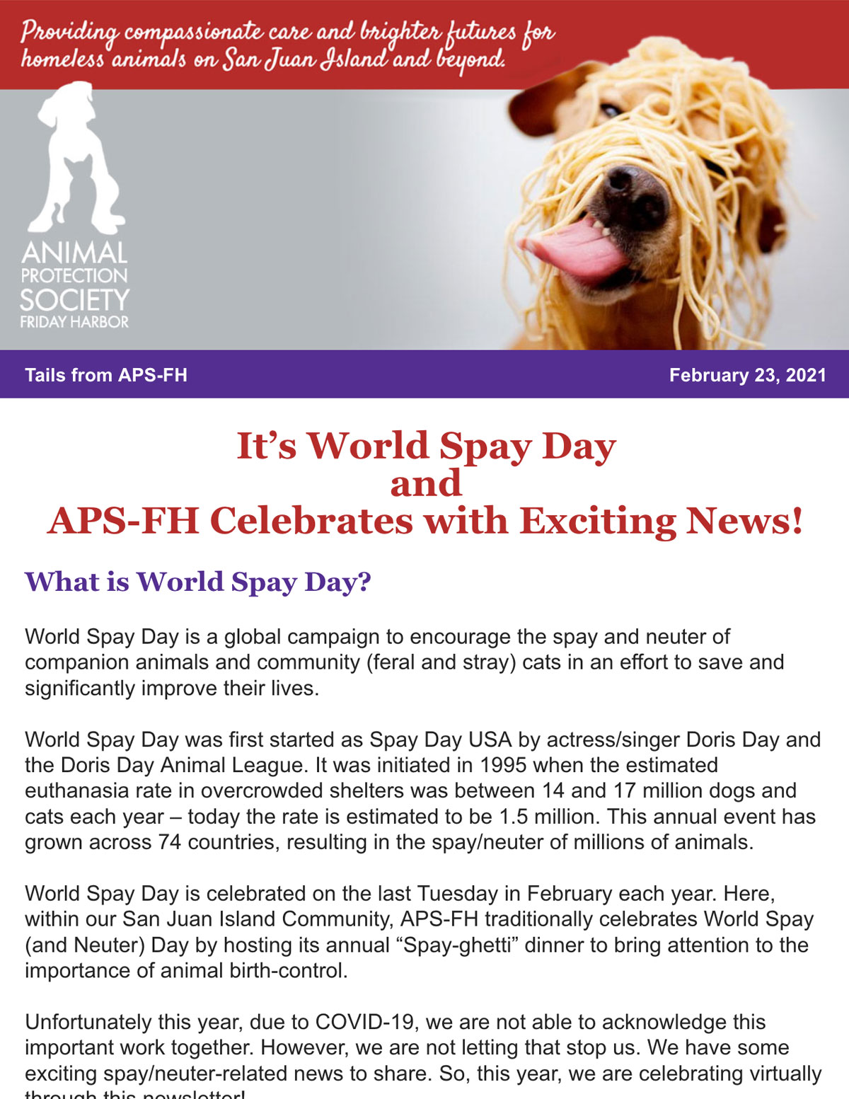 Feb 23 World Spay Day Newsletter